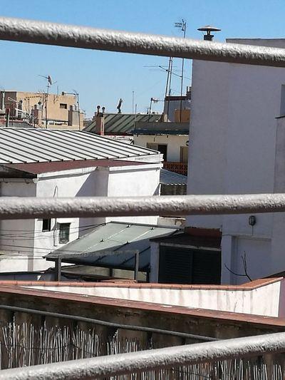 Vista llunyana de la Mercè des d'un terrat del raval Iglesia Cúpula La Merce City Photograph Residential Building Façade House Architecture