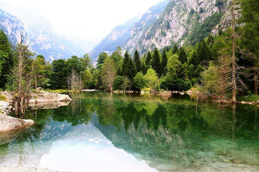 Reflection Water Mountain Lake Landscape Valtellina Italy🇮🇹