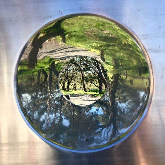 Darenberg Mirror Hole Hole In The Wall Art Beatiful Nature Kaleidoscope Metal Reflection Transparent Close-up Nature Tree Geometric Shape Circle Still Life Focus On Foreground Green Color Plant