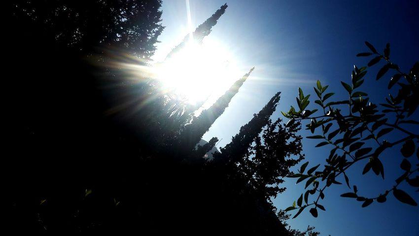 Sun Sun Rays ☉🌞🌞☉ ☉☉ ☉ Beautiful Sun ☉☉☉ Nature Photography Nature Collection Beautiful Nature Beautiful ❤❤ Nature