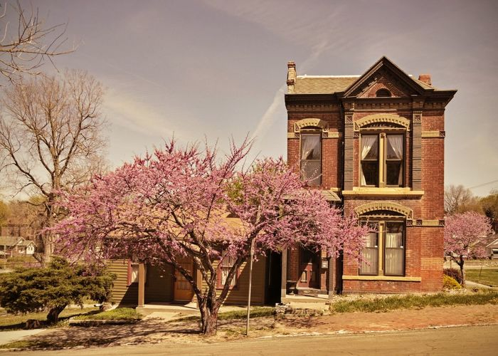 RED BUD Kind of Day ~ Saint Joseph, Missouri USA ~ Kcac Artist Beautiful Day In The Neighborhood... FoToEdge Cityscape Photography Walker Evans Urban Landscape Landscape Dreamscapes Streetphotography Urbanphotography Dreamscapes & Memories Old House On The Road Life Is A Mirror And Will Reflect Back To The Thinker What He Thinks Into It -Ernest Holmes Streetphotography Colors Saint Joseph Divelandscape, Divestreetoghrophy, Cityscape, American Dream Time Survivor The Old House Urbanphotography Theappwhisperer Inspired By Edward Hopper It Was Only A Dream Urbanexploration