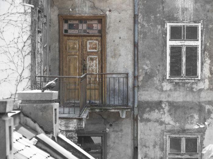 Tür Window