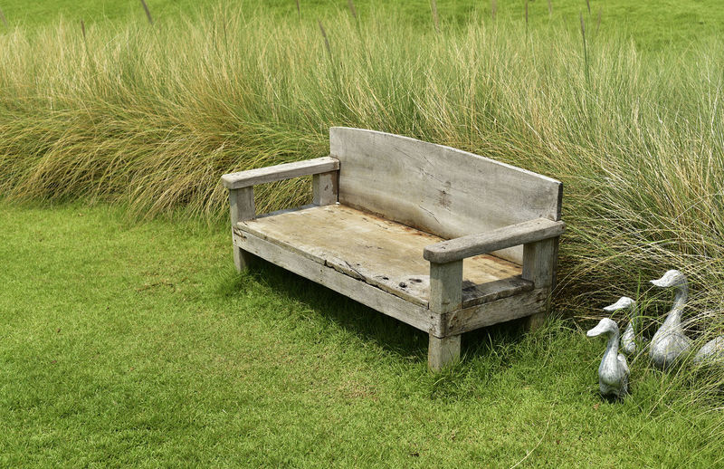 View of an empty bench on field