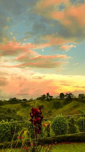 Golden Hour with Full Moon San Vito, Costa Rica Beauty Moon Full Moon Sunset #sun #clouds #skylovers #sky #nature #beautifulinnature #naturalbeauty #photography #landscape Golden Hour Tropics Sky Porn