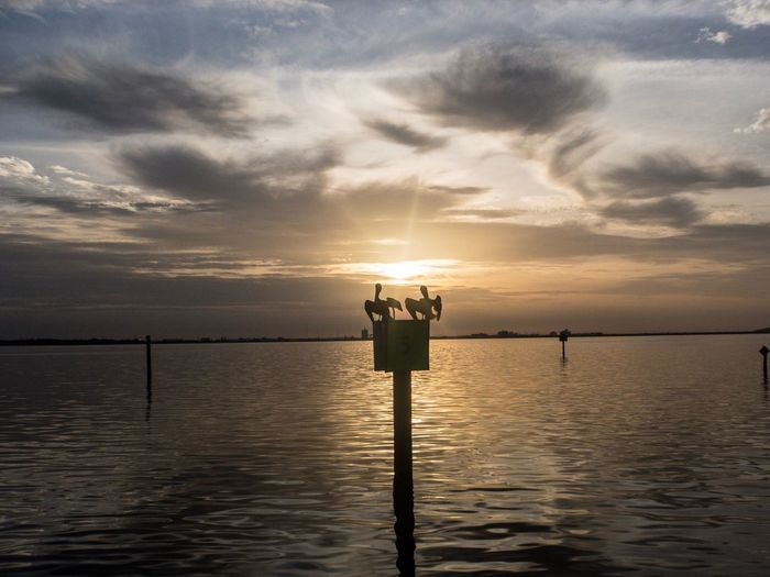 TheGreatOutdoors Eyeemawards2018 Eyeem Market LoveBirds ❤ Water Sky Sunset Sea Beauty In Nature Scenics - Nature Nature Cloud - Sky Tranquil Scene Outdoors Horizon Sunlight