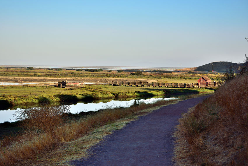 Newark Slough Trail 6 Tidal Wetlands Marsh Salt Pond Newark Slough Trail Tidelands Trail Streams Channels Footbridge Coming Around The Bend Hiking Adventures Hiking Trail Picnic Hut Overpass Duck Hunters Cabin Don Edwards National Wildlife Refuge Nature Nature_collection Beauty In Nature Landscape Landscape_Collection Levees Dikes Western Coyote Hills Watershed Eastbay Hills Southern San Francisco Bay Landscape_photography Restored Marshlands Salt Basin