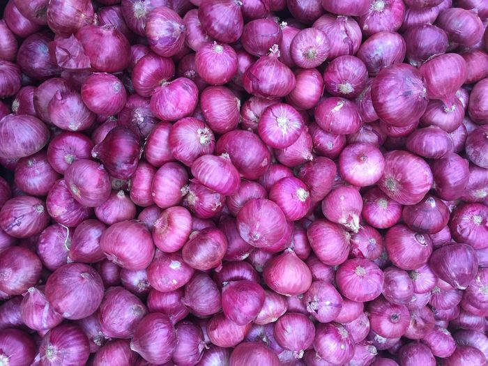 Red Onions Full Frame Pink Color Backgrounds No People Food And Drink Magnification Healthcare And Medicine Medical Condition Science Illness Close-up Repetition Pattern Indoors  Abundance Textured  Food Purple Small Textured Effect