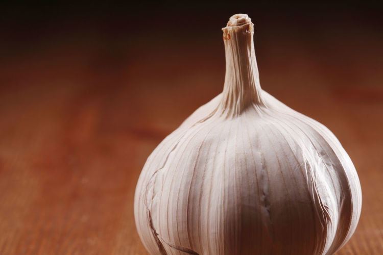 Close-up of white garlic on table