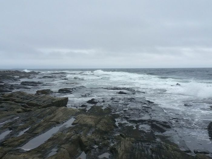 Monochromatic Portraiture Grey Day Rocky Landscape Rough Sea Rough Texture Rocky Coastline Portland Maine
