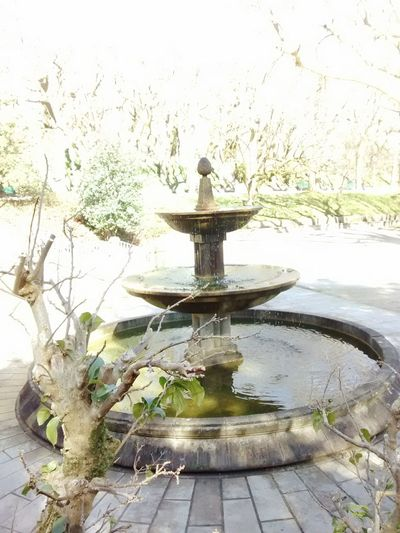 Taking Photos EyeEm Relaxing Hi! Enjoying Life Water_collection Urbanpark Fontain Fountain_collection Water Photo♡ EyeEmwaterlover
