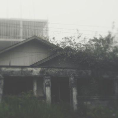 Nemu rumah vamvier Vscocam Vamvierhoms Embuninstag Kamerahpgue