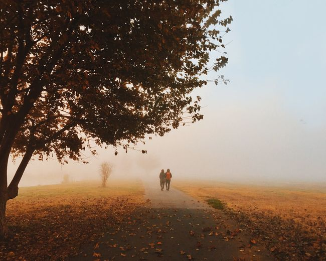 Rear View Of People Walking On Pathway Amidst Field During Foggy Weather