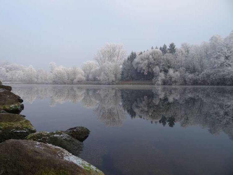 Reflection Water Nature Tree Beauty In Nature Tranquil Scene Scenics Idyllic No People Fog Outdoors Winter Wonderland Mist White Frost Neckar River Mirror Beauty In Nature Waterfront Clear Sky Germany Frost New Year Dream Perspectives On Nature