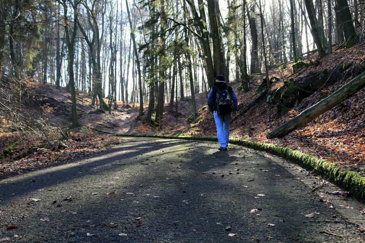 Rear view of man walking on road against trees in forest
