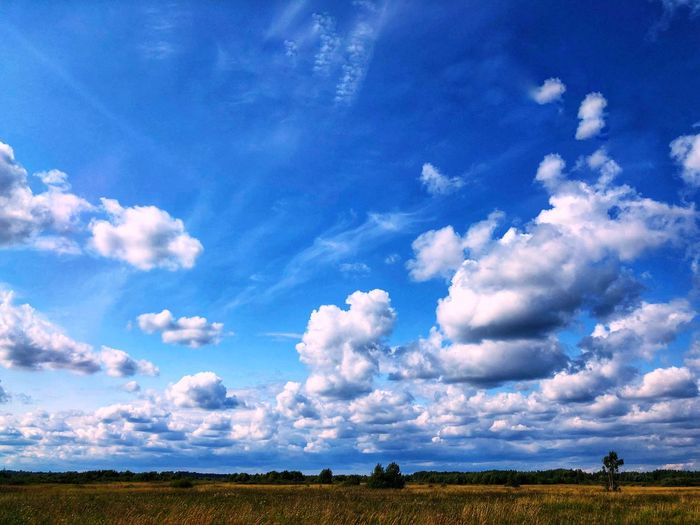 Cloudy sky 🌌 Summertime Clouds And Sky Clouds Cloudy Day Cloudy Cloud - Sky Sky Blue Landscape Beauty In Nature Tranquil Scene Tranquility Scenics - Nature No People Nature Field Land Plant Day Outdoors Environment Rural Scene Growth Idyllic Tree