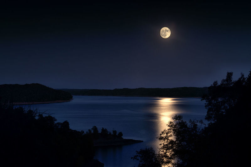 Harvest Water Moon Sky Beauty In Nature Tranquility Tranquil Scene Scenics - Nature Full Moon Night Nature Silhouette No People Tree Reflection Lake Space Plant Moonlight Outdoors Astronomy Dark Planetary Moon Reflections Capture Tomorrow
