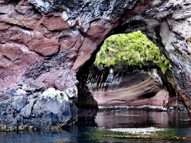 open cave entrance Sub Antarctics Auckland Islands Open Cave Entrance Rock - Object Rock Formation Nature Water Beauty In Nature Geology Day No People Outdoors Cave Tranquility Natural Arch