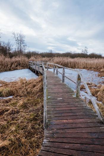 View of wooden boardwalk leading towards shore