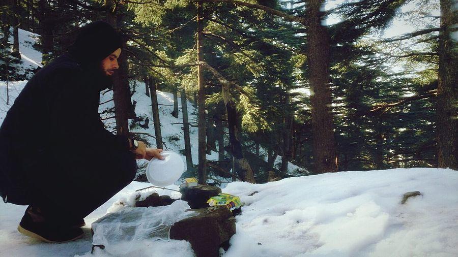 Wildlife Wildlife & Nature Wildlife Photography Barbecue Snow Trees Montains    Forest Chrea National Park - Algeria.