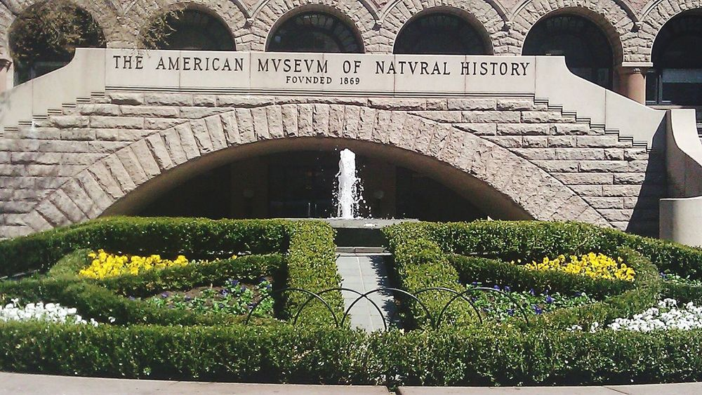 The American Museum Of Natural History. American Museum Of Natural History Museum NYC Central Park West The Best Of New York Manhattan NYC Photography History Taking Photos Garden