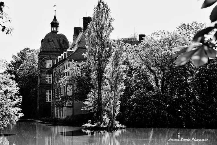 Schloss Havestadt Architecture Travel Destinations Outdoors Building Exterior Water Sky No People Day Tree Politics And Government Eyem Best Shots Eyem Gallery EyeEm Best Shots - Black + White Close-up Eyeemphotography Bnw_shot Castle Park Bnw_of_our_world Bnwlovers Bnw_magazine Bnw_lover Fotooftheday Photography Built Structure Architecture