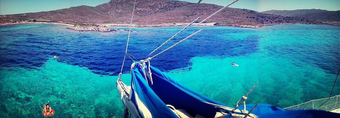 Relaxing Swimming Enjoying The Sun Asinara