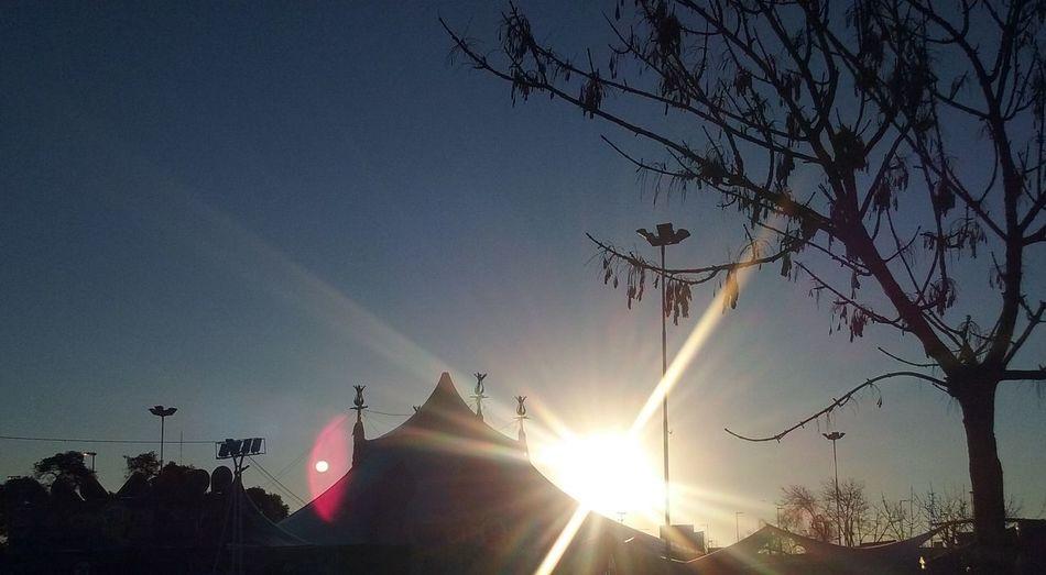 Atardecer Circo Cielo Y Nubes  Hojas De árbol Luznatural Paisajeurbano Sol árbol