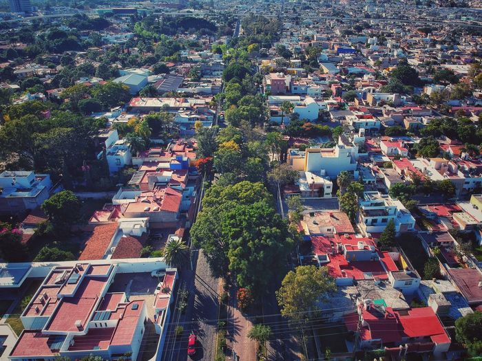 Jalisco Zapopan Architecture Building Exterior City High Angle View Built Structure Cityscape Day Aerial View Residential District Tree