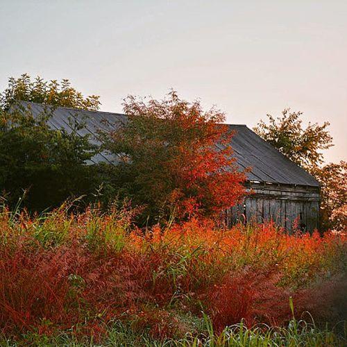 Old barn Tagsforlikes .COM Tflers @TagsForLikes Ruralarchitecture Oldbarn