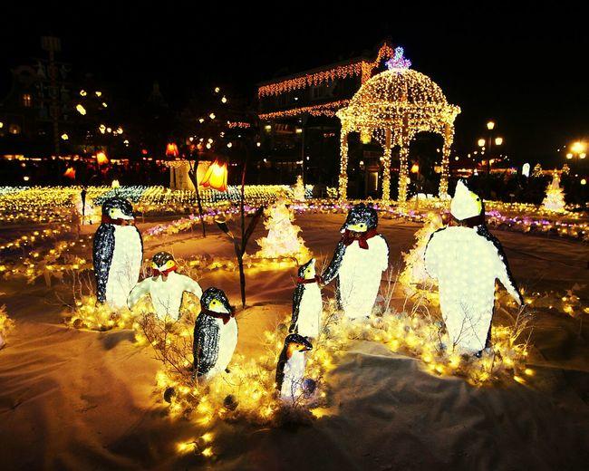 Light Lights Night Lights Christmas Lights Christmas Decorations Xmas Lights  Xmas Decorations Penguins Theme Park Amusementpark Festival Christmas Festival Everland Festival