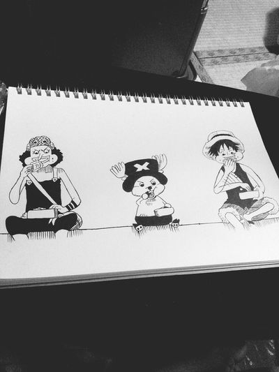 Drawing One Piece Manga Anime