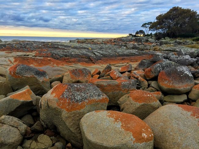 Tasmania Australia Sky Cloud - Sky Rock Solid Nature Rock - Object Land Large Group Of Objects Beauty In Nature Outdoors Day Sunlight Tranquil Scene No People Beach Stone - Object Tranquility Sea Abundance Stack