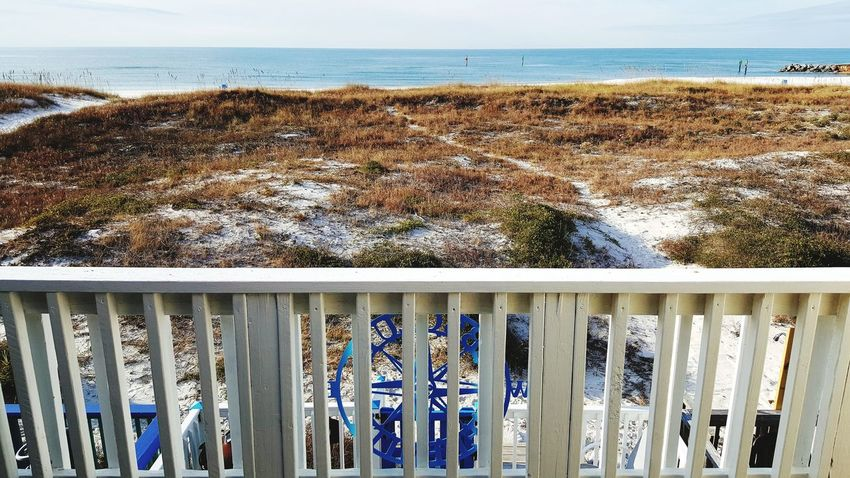 beautiful mid December day Mexico Beach Vacation Rentals Winter On The Beach Deck Winter In Florida Fresh On Eyeem  Outdoors Day Water Beach Sunlight Sea No People Horizon Over Water Nature Shades Of Winter Beauty In Nature Scenics