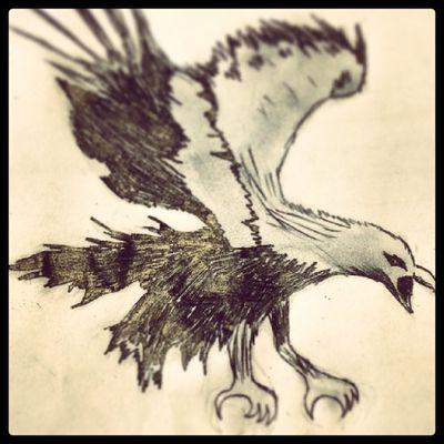 American eagle $$$