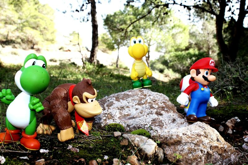 Super Mario Koopa Troopa Toad Yoshi Donkeykong Nintendo Forest Landscape Dolls Nature