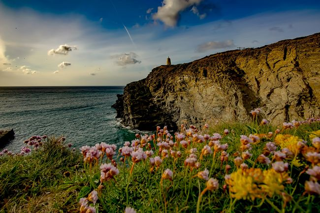 Coastal seascape Flower Sky Cloud - Sky Nature Outdoors Plant Sea Summer Travel Destinations Beauty In Nature Sunset Landscape Day Freshness No People Ocean Photography Ocean Sunset  Ocean_Collection ~~ Sunset_collection Sunsets Of Eyeem Sunset_captures Cliffs And Water Rugged Coastline Beach Coastal Landscape