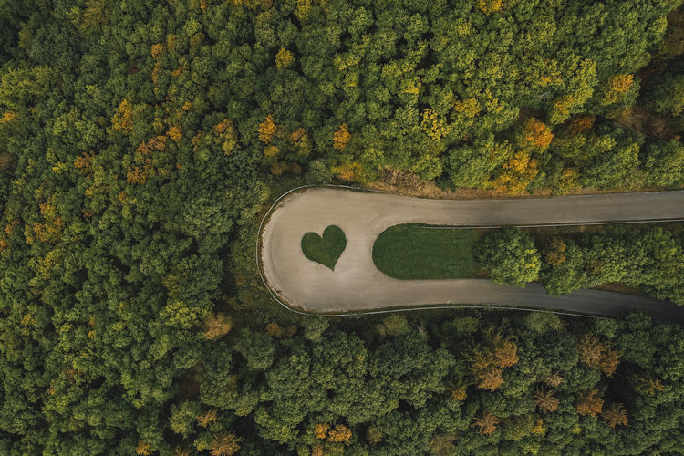 High Angle View Of Road With Heart Shape Against Trees