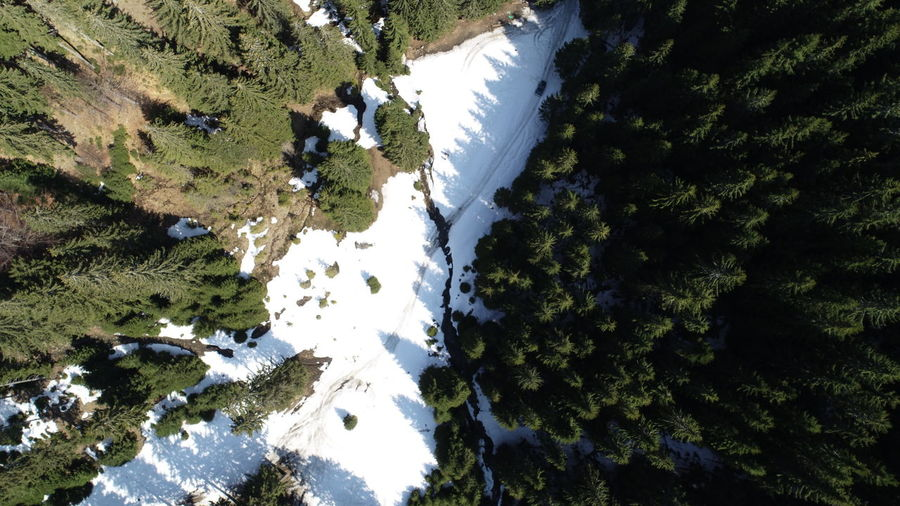 Tree Water Aerial View High Angle View Sky Snowcapped Mountain Snow Covered Rocky Mountains Snowcapped Mountain Road Snow Drone  Mountain Range Cold Temperature
