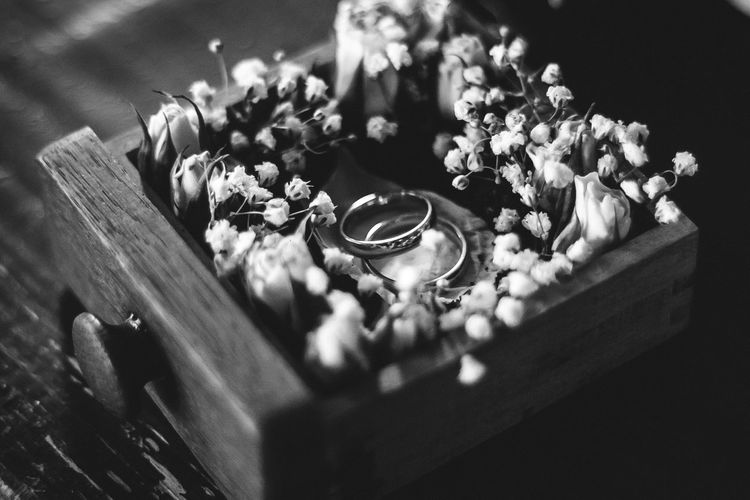 Engagement Gold Wedding Photography Blackandwhite Close-up Contrast Engagement Ring Goldrings Indoors  Jewel Jewells Jewelry Marriage  No People Rings Wedding Day Weddingrings