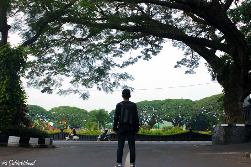 Sendiri Alone Malang, Indonesia Eyeam_bestshot Indonesia_photography Photography Burn Nature Photography Nature