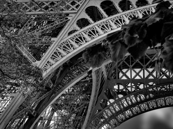 Tour d'eiffel Tower Blackandwhite Black And White Black & White Eiffel Tower Eiffelturm Tour Eiffel Tour Eiffel, Paris. Paris Paris, France  France Paris ❤ France 🇫🇷 City Pattern History Architecture Built Structure Close-up Building Exterior Architectural Design Architecture And Art Architectural Detail Stained Glass Architectural Feature Arched Decorative Art