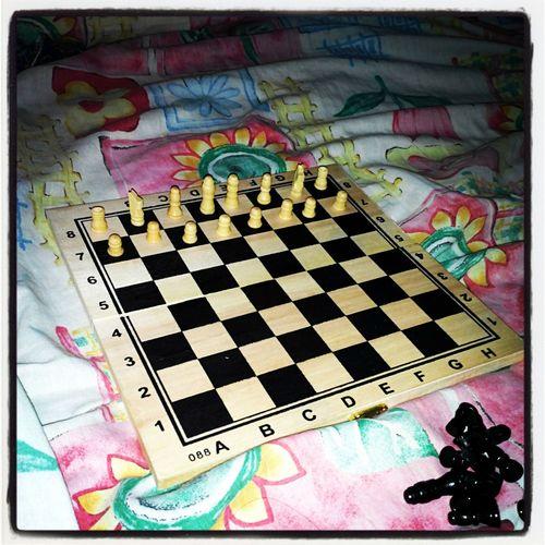 Chess Chess War Playtime Tgif