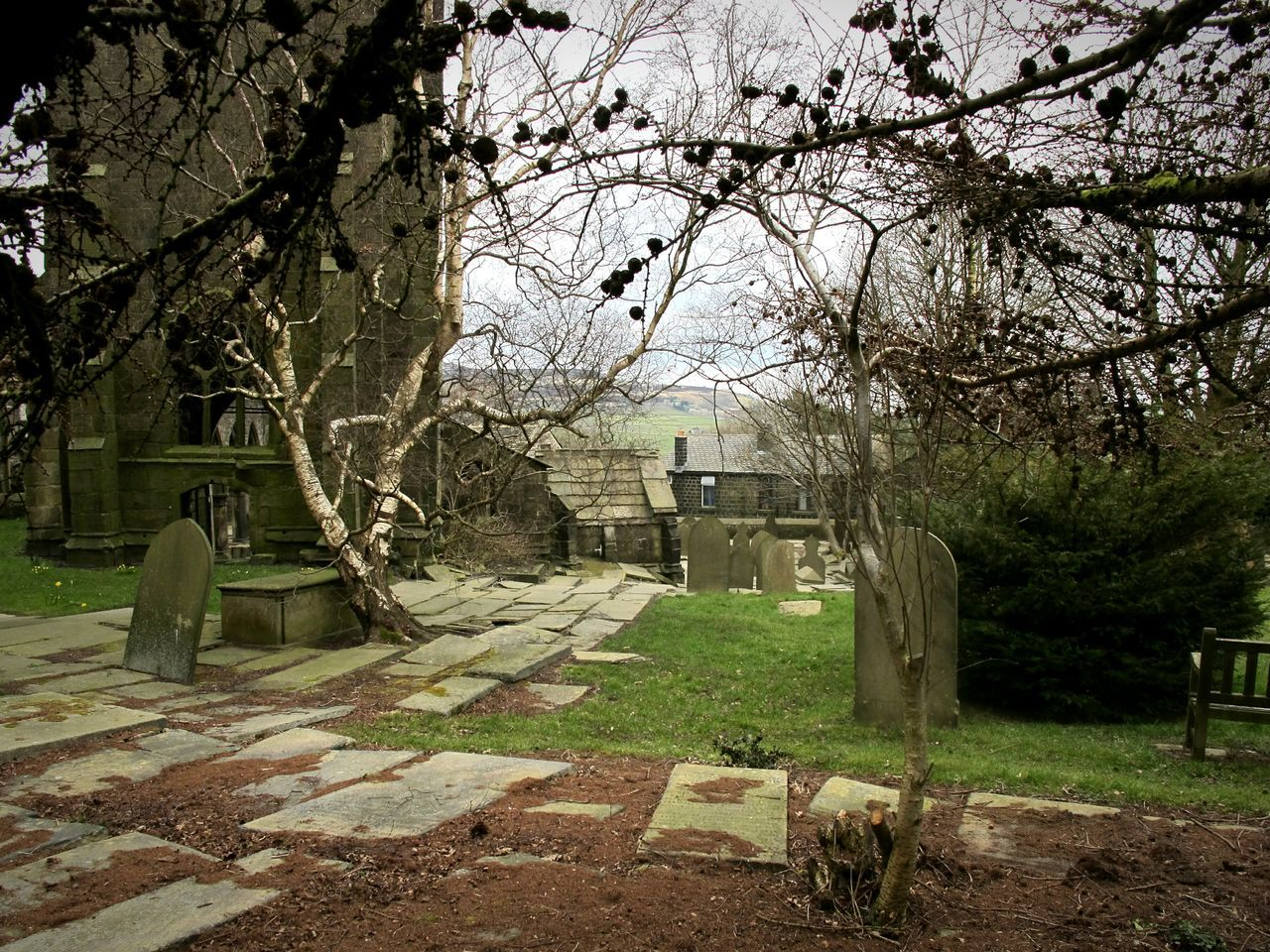 tombstone, cemetery, tree, memorial, graveyard, gravestone, grave, no people, outdoors, cross, day, tranquility, grass, built structure, branch, bare tree, nature, architecture, sky