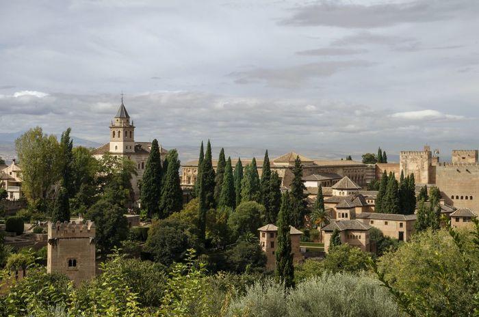 tarde tranquila PAISAJE URBANO Historic España Granada, Spain Granada Tree City Sky TOWNSCAPE Old Town Townhouse