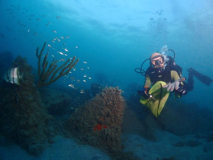 Man scuba diving undersea
