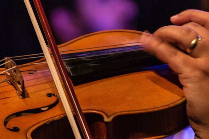 Violino -