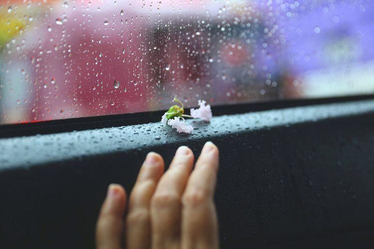 Rain drops on wet glass of car window