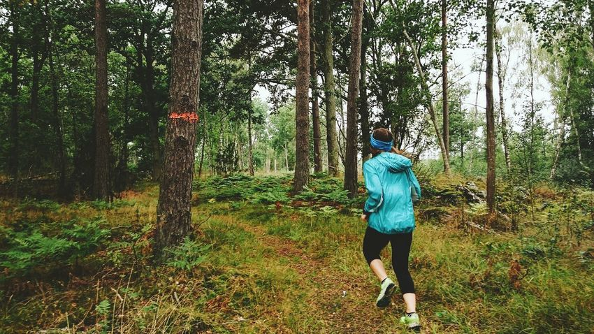 Running Tree Forest Leisure Activity WoodLand Non-urban Scene Footpath Sports Outdoor Training Swedenlandscape Sweden Nature Sweden Wooden Young Adult Trailrunning Trail Löpning