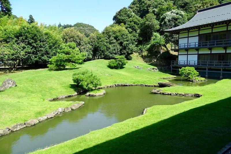 Zen garden Japan Kamakura Kenchoji Temple Zen Zen Garden Plant Tree Green Color Nature Water Sunlight