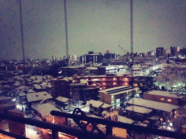 snowy view Snow 大井町 鮫洲 View